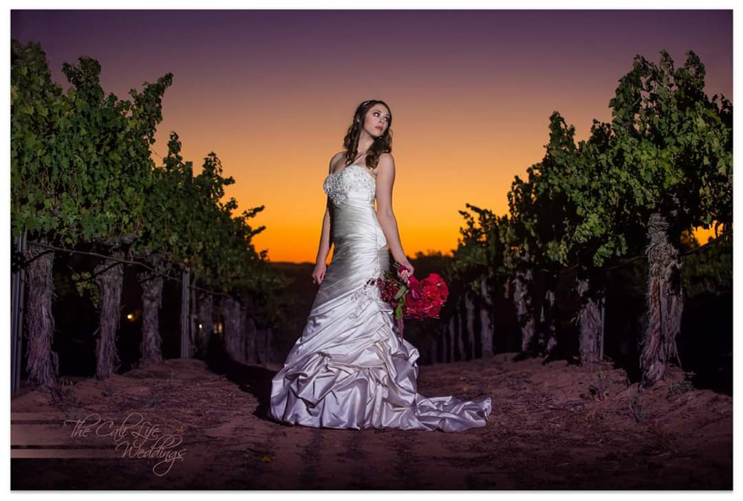 Winery Wedding Bride at Sunset