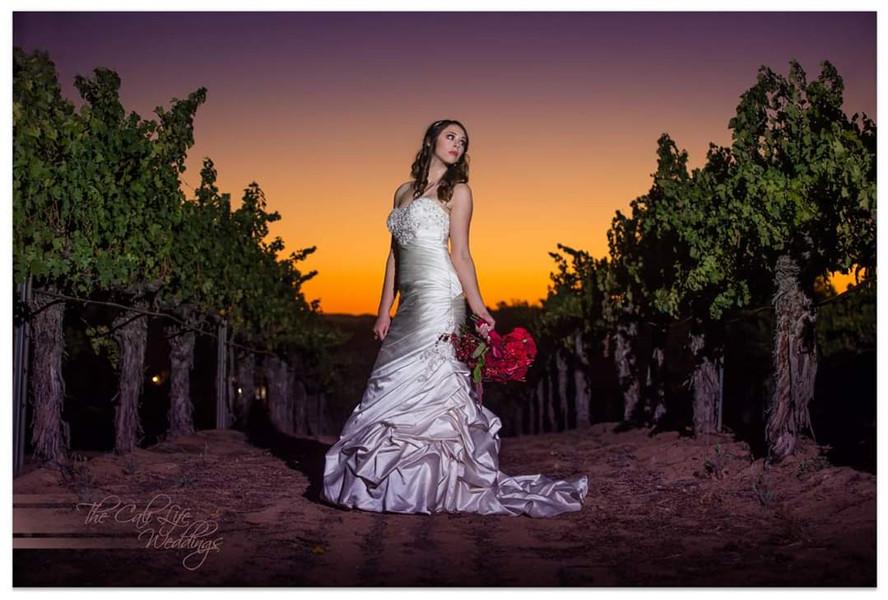 Winery Wedding Bride at Sunset