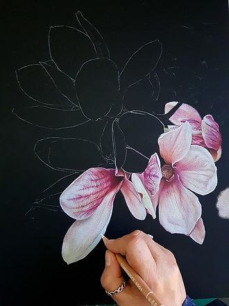 Magnolia Black WIP.jpg