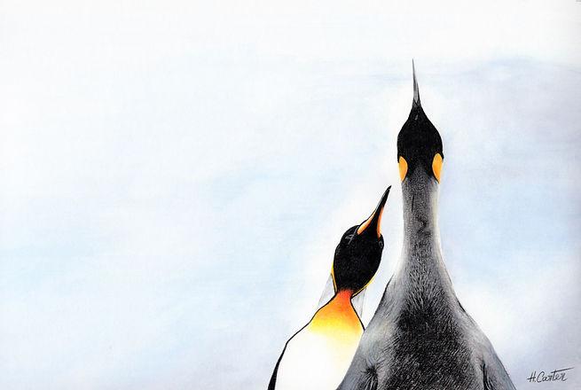 Penguin Prints.jpg