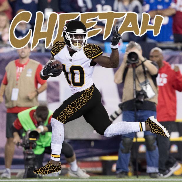 Cheetah_V1.jpg