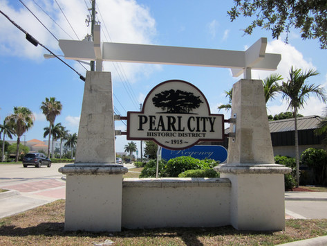 Preserving the Pearl City Communities: A Virtual Town Hall Event