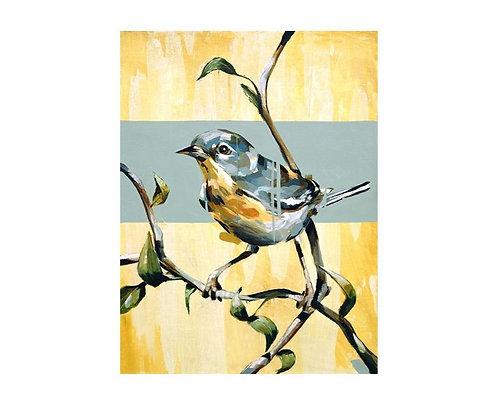 Warbler A Framed