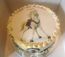 Maximus Birthday Cake