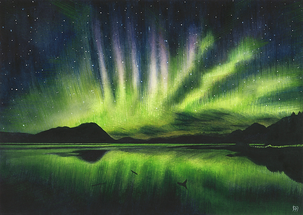"""A good night for the lights"" (Zimovia Strait, Wrangell, Alaska)"