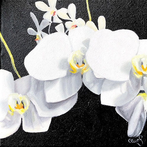 Vanda - Original Painting
