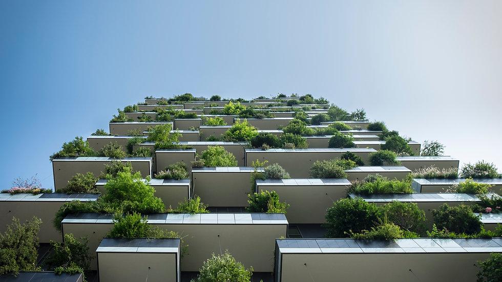 Estrategias de diseño bioclimático para crear edificios eficientes