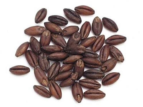 1/2 Lb. Organic Purple Hulless Barley Berries