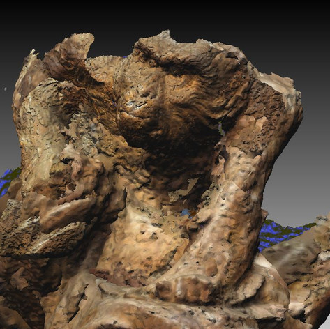 Photo Sculpture,Aged monkey