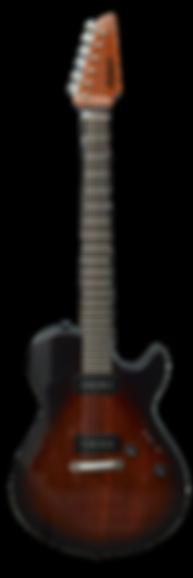 asken-guitars-intercooler-p2st-tb.png
