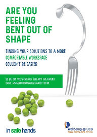 A3 bent out of shape Poster_Page_1.jpg