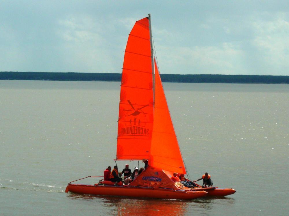 2010-612