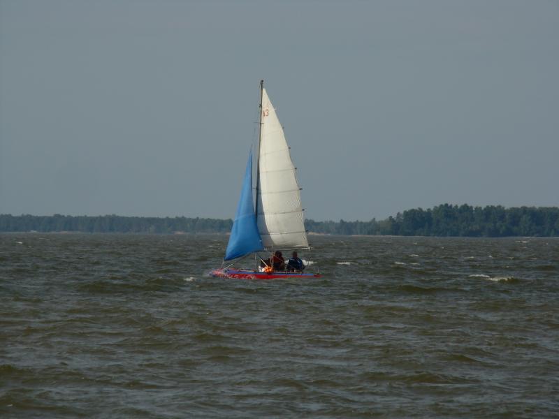 2010-686