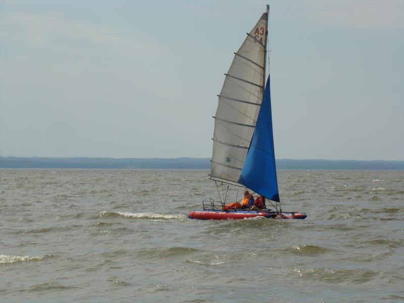 2010-146