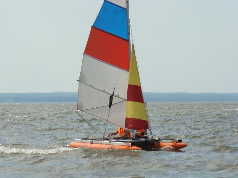 2010-660
