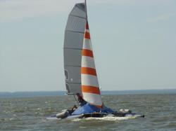 2010-667