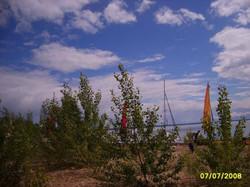 2008_-99