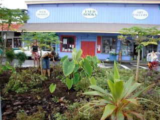 Edible Landscaping: Hale Mahi'ai