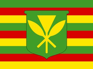 Annual King Kamehameha Celebration!