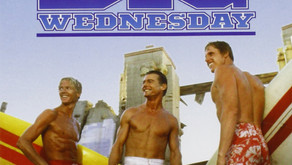 Sequel to Big Wednesday: Jaws 1993