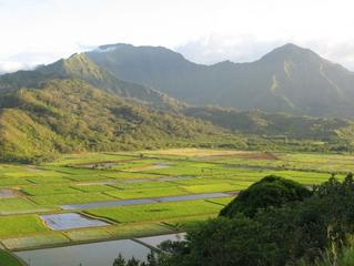 Ancient Hawaiian Water Rights