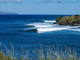 Amazing Honolua Bay, Maui: Please Click and Read!