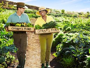 Article: Oprah's Farm on Maui