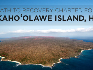 Article: Reclaiming Kaho'olawe: Activism in Hawaii