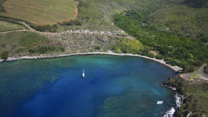 The History of Honolua Bay