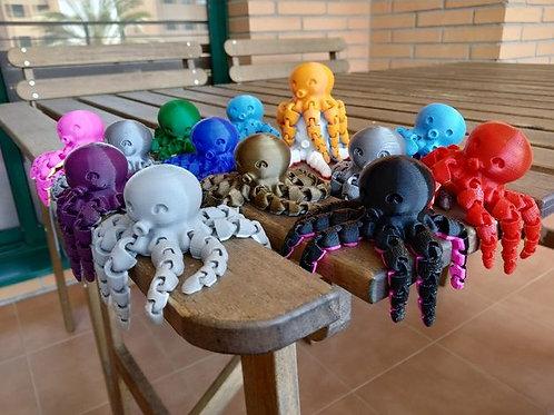 Cute Mini Octopus
