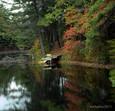 Raccoon Lake