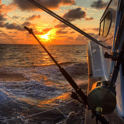 sunset on fishbone