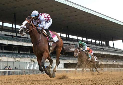 2020 Belmont Winner Tiz the Law.jpg