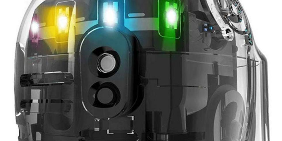 CodeForce Robotics