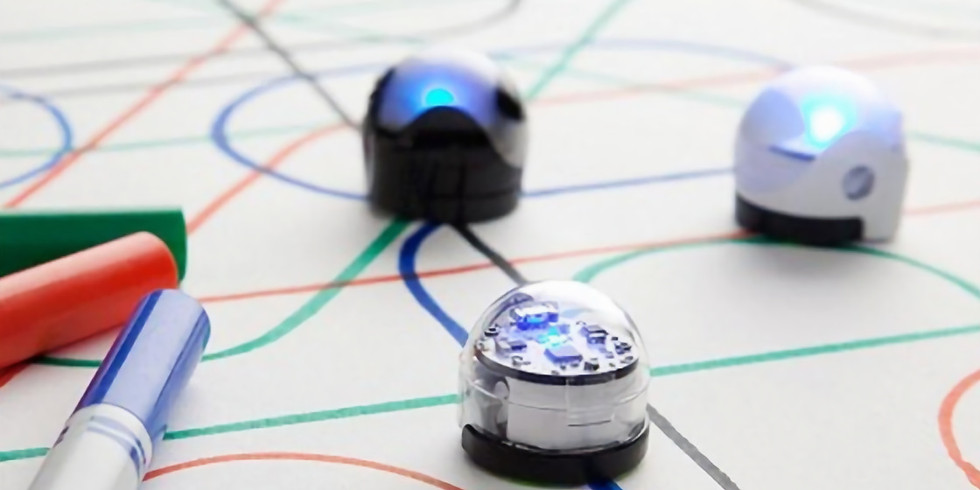 Coding and Robotics - Homeschool (STE{A}M)