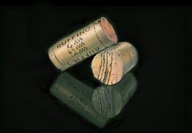 155. protection against lires 70x105cm.jpg