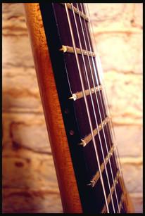 Stripe bass neck