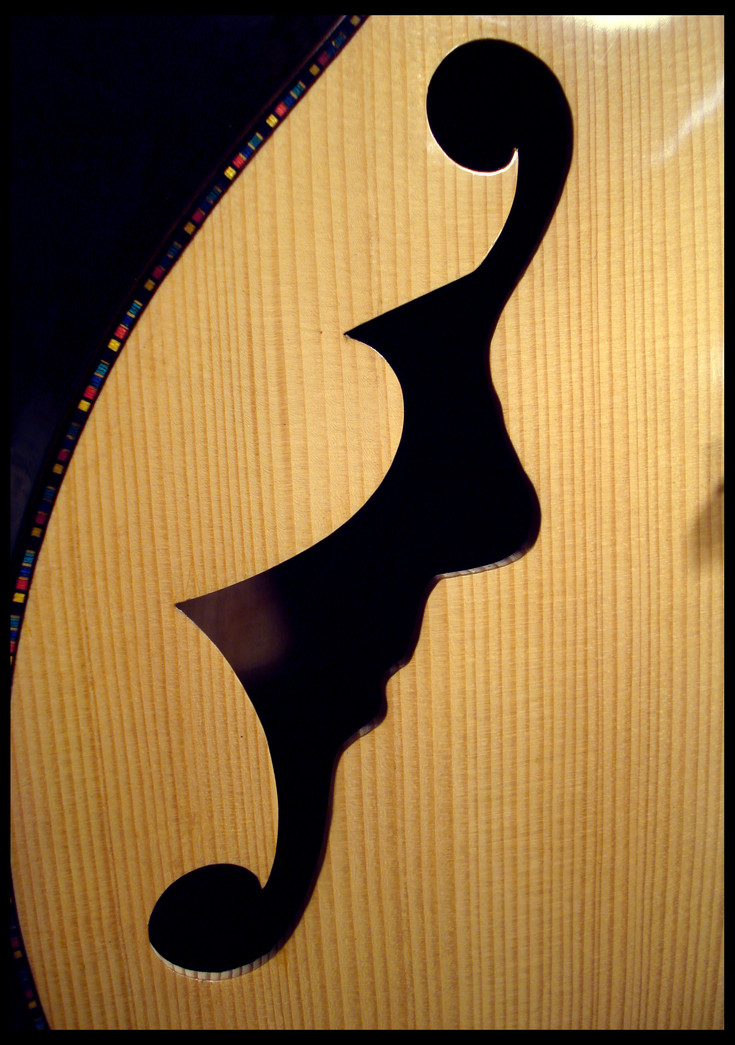 Archtop f-hole