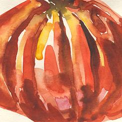 Anna Spakowska tomatoes 2.jpg