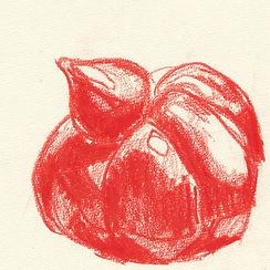 Anna Spakowska tomatoes 17.jpg
