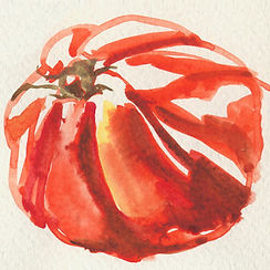 Anna Spakowska tomatoes 19.jpg