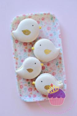 bird macarons