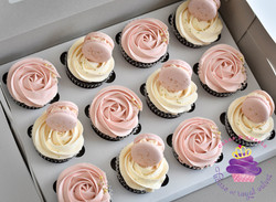 pink swirl cc