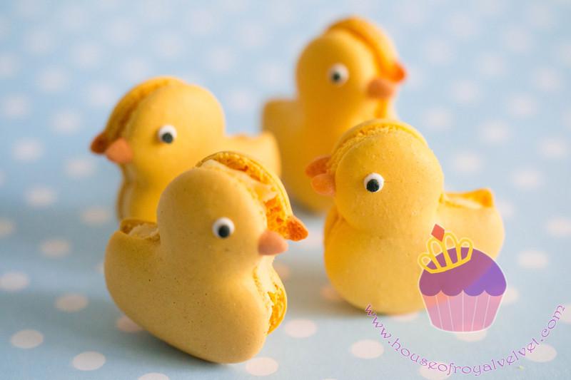 duck macarons