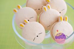 mashimaro macarons