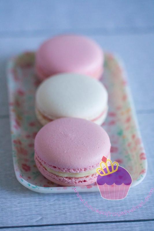 pink & white macarons