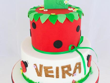 Ladybug Cake for Veira