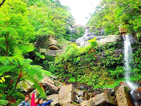 西表島女子旅〜滝へ行こう〜🌴💚ジャングル大冒険〜🦎