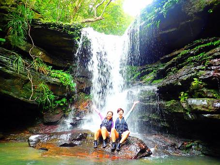 西表島で島旅を楽しもう〜💚🦋秘境の滝へ〜