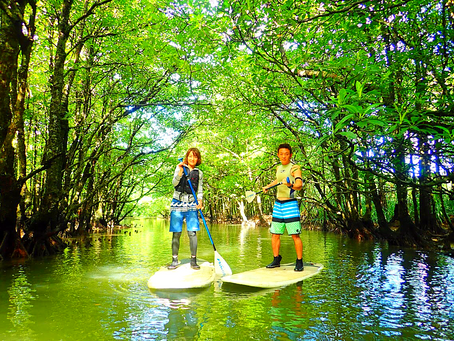 島旅で西表島へ〜🌴大自然をのんびりSUPクルーズ〜